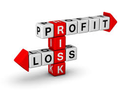 limiting investment risk   Andrew Abramowitz   NYC Business Lawyer